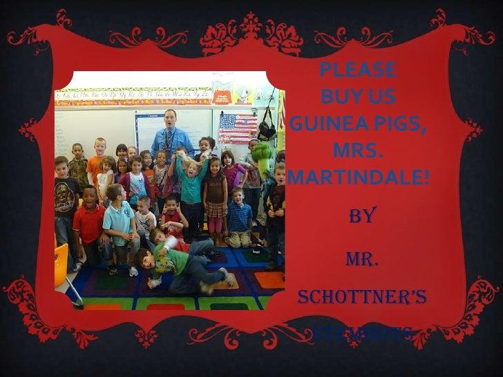PLEASE  BUY USGUINEA PIGS,   MRS.MARTINDALE!     By    Mr.Schottner'S  STEMBOTS