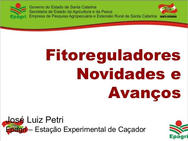 Governo do Estado José Luiz Petri Epagri – Estação Experimental de Caçador Fitoreguladores Novidades e Avanços
