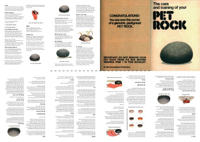 make your own pet rock part 1 the manual