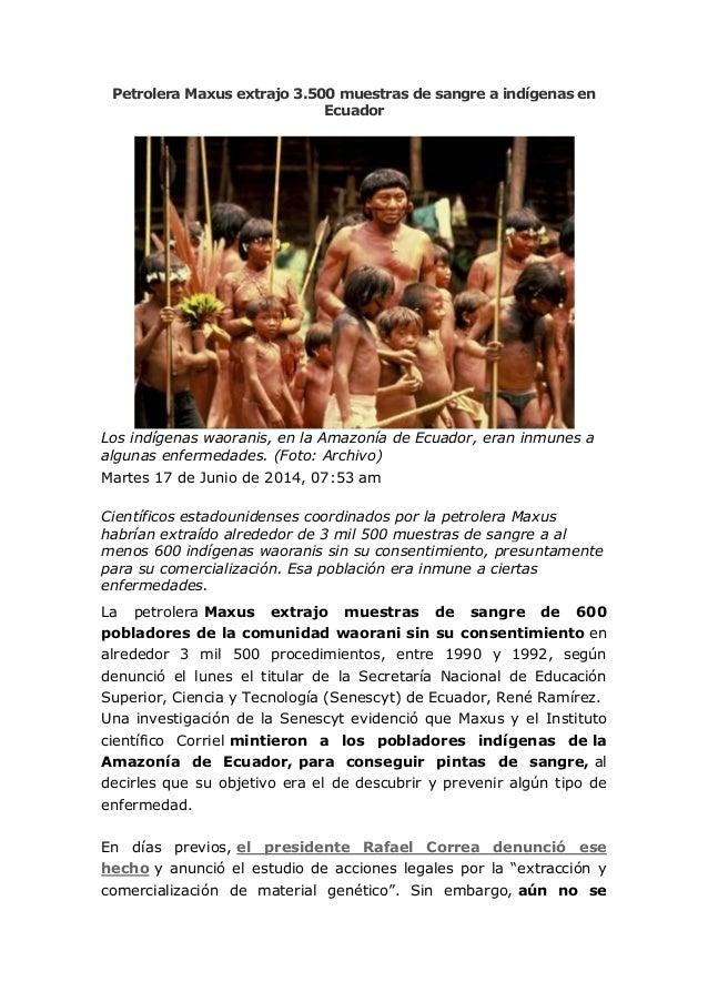 Petrolera Maxus extrajo 3.500 muestras de sangre a indígenas en Ecuador Los indígenas waoranis, en la Amazonía de Ecuador,...