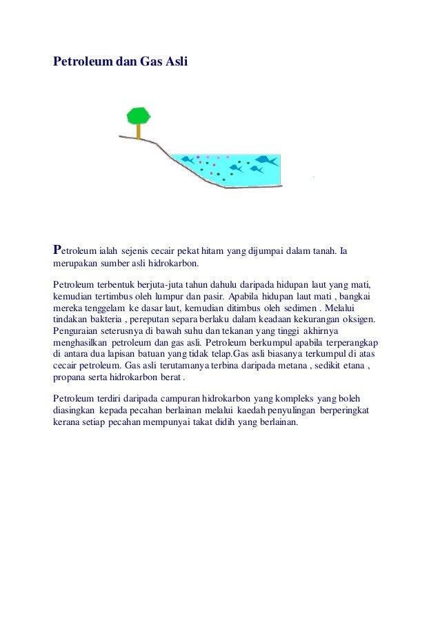 Petroleum Dan Gas Asli