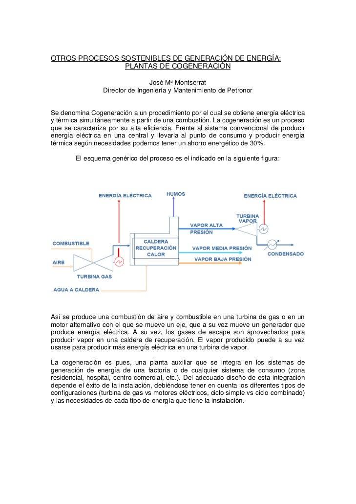 OTROS PROCESOS SOSTENIBLES DE GENERACIÓN DE ENERGÍA:                PLANTAS DE COGENERACIÓN                               ...