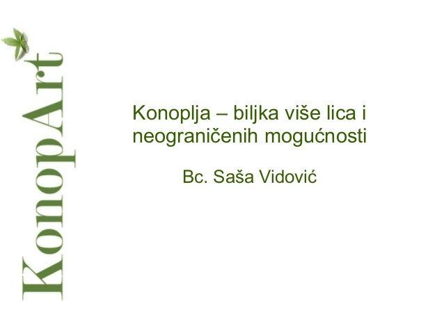 Konoplja – biljka više lica i neograničenih mogućnosti Bc. Saša Vidović