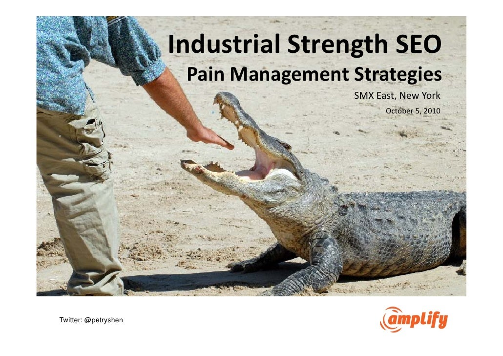Enterprise SEO - Pain Management Strategies