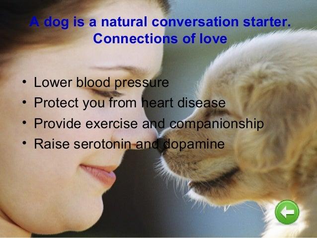 Advantages disadvantages of having a pet
