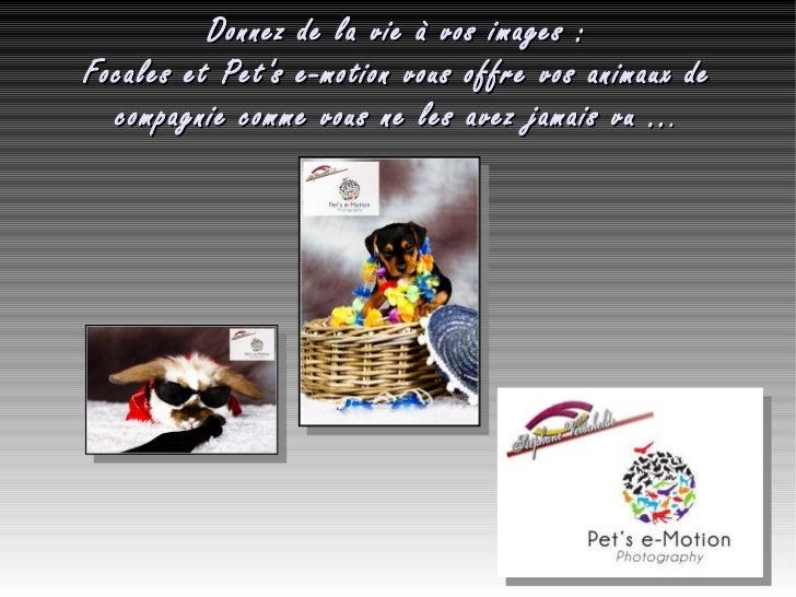 Donnez de la vie à vos images: Focales et Pet's e-motion vous offre vos animaux de compagnie comme vous ne les avez jamai...