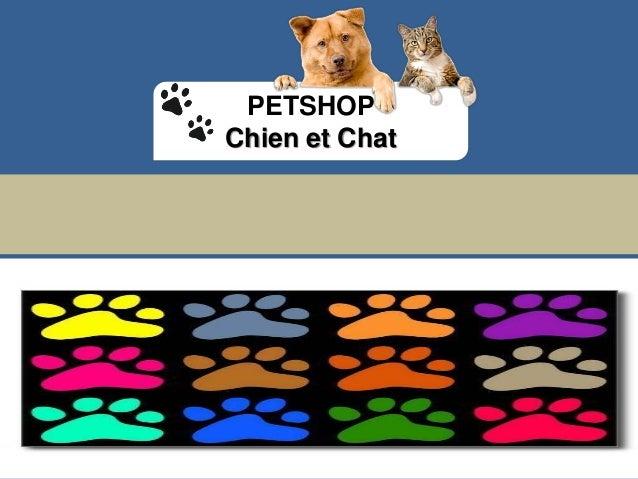 Start up pet shop chien et chat - Chien pet shop ...