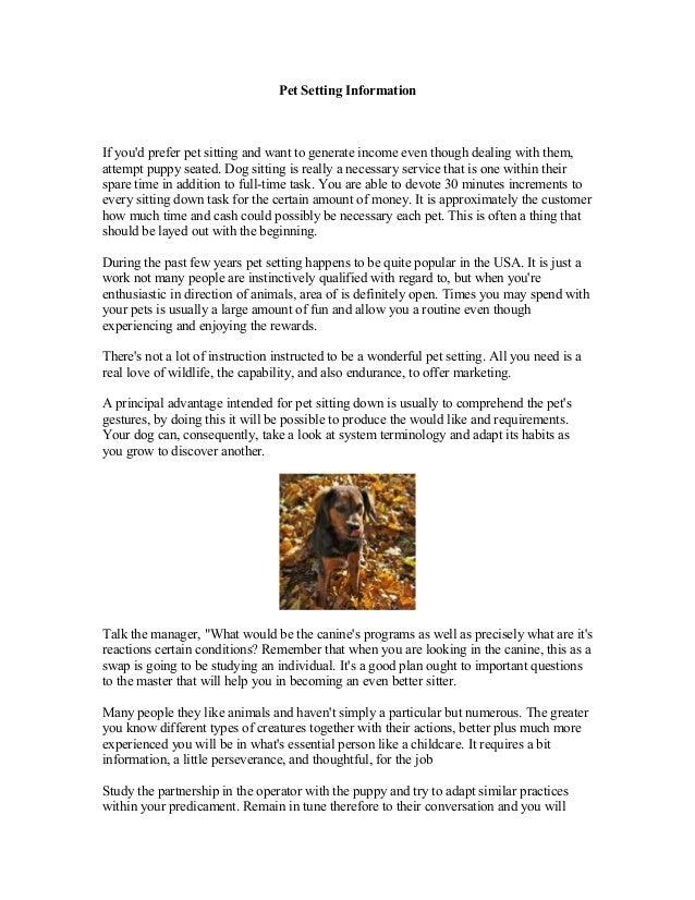 pet sitting information