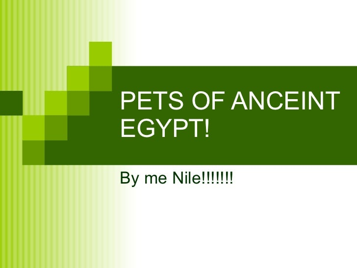 PETS OF ANCEINT EGYPT! By me Nile!!!!!!!