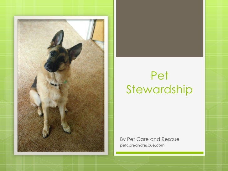Pet  StewardshipBy Pet Care and Rescuepetcareandrescue.com
