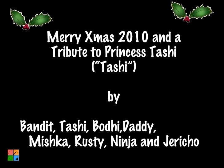 "Merry Xmas 2010 and a Tribute to Princess Tashi (""Tashi"") by Bandit, Tashi, Bodhi,Daddy,  Mishka, Rusty, Ninja and Jericho"