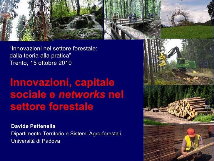 Davide Pettenella - Innovazioni, capitale sociale e networks nel settore forestale