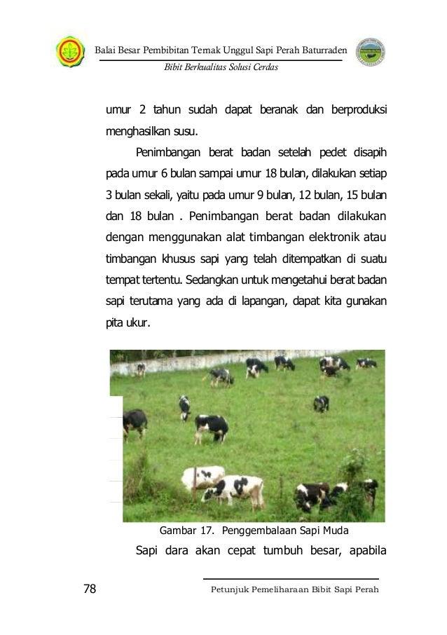 Jumlah ternak yang dipelihara harus sesuai dengan