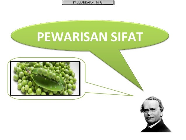 BY LILI ANDAJANI, M.Pd      BY LILI ANDAJANI, M.PdPEWARISAN SIFAT