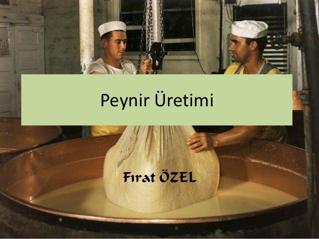 Peynir Üretimi Fırat ÖZEL