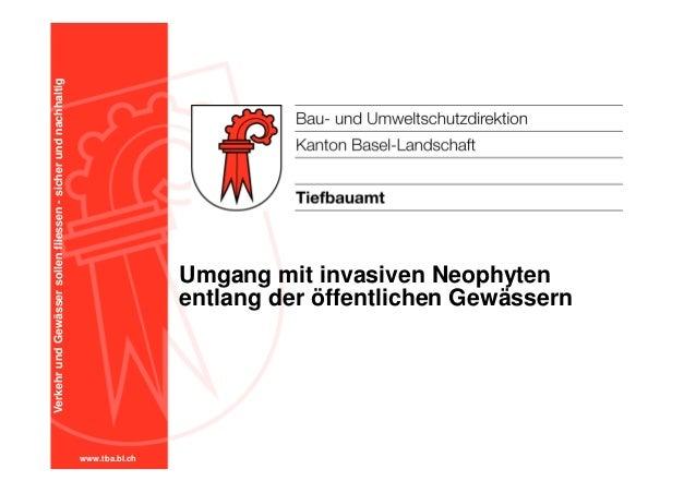 www.tba.bl.ch VerkehrundGewässersollenfliessen-sicherundnachhaltig Umgang mit invasiven Neophyten entlang der öffentlichen...