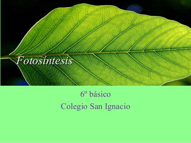 FotosíntesisFotosíntesis 6º básico Colegio San Ignacio