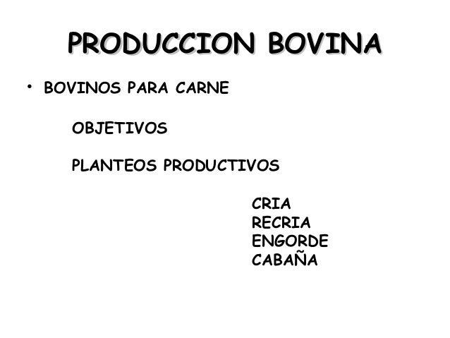 Zootecnia General