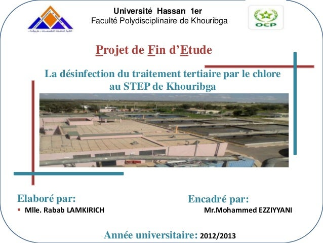 Elaboré par:  Mlle. Rabab LAMKIRICH Encadré par: Mr.Mohammed EZZIYYANI Projet de Fin d'Etude Année universitaire: 2012/20...