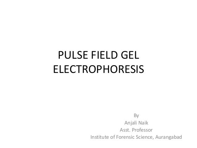 PULSE FIELD GEL ELECTROPHORESIS By Anjali Naik Asst. Professor Institute of Forensic Science, Aurangabad