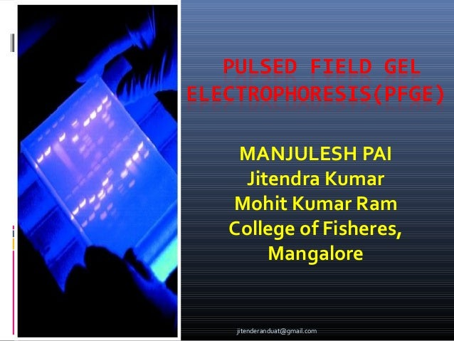 MANJULESH PAI Jitendra Kumar Mohit Kumar Ram College of Fisheres, Mangalore  jitenderanduat@gmail.com