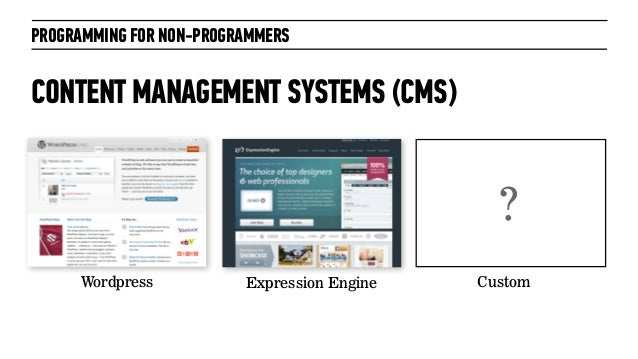 PROGRAMMING FOR NON-PROGRAMMERSCONTENT MANAGEMENT SYSTEMS (CMS)Wordpress Expression Engine Custom?