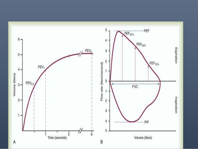 • FEV1/FVC%, and FEV3/FVC% - These are ratios calculated by dividing the Forced Expiratory Volume results by the Forced Vi...
