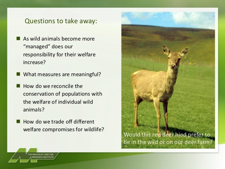 questions related to wildlife