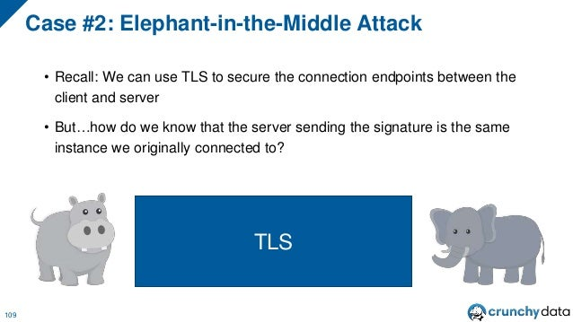 Case #2: Elephant-in-the-Middle Attack 111 TLS OK, here's a bunch of stuff that looks normal because your connection is al...