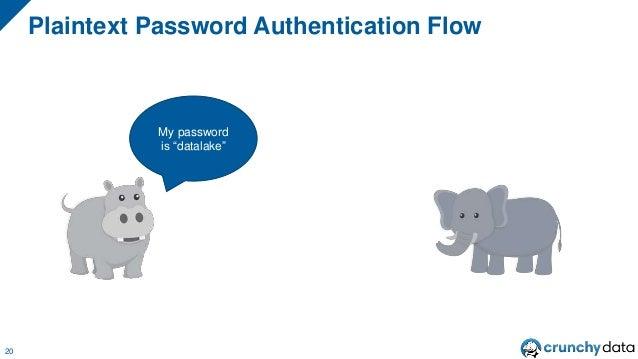 "Plaintext Password Authentication Flow 20 My password is ""datalake"""