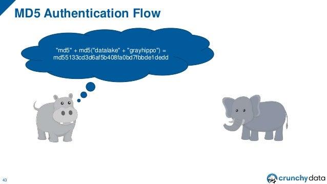 """MD5 Authentication Flow 43 """"md5"""" + md5(""""datalake"""" + """"grayhippo"""") = md55133cd3d6af5b408fa0bd7fbbde1dedd"""