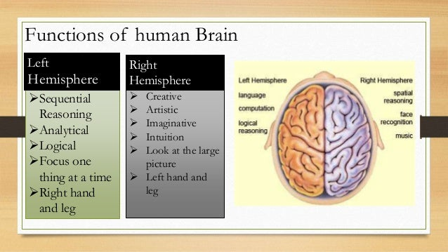 a whole new mind analytical essay A whole new mind the six senses  rather than the analytical nature to which is a way to utilize empathy to bring about change i think the image to the left gives.