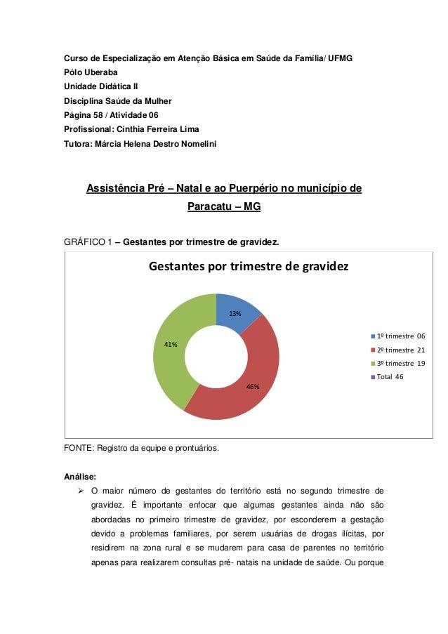 Curso de Especialização em Atenção Básica em Saúde da Família/ UFMG Pólo Uberaba Unidade Didática II Disciplina Saúde da M...
