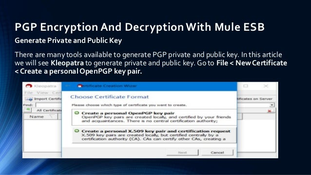 PGP Encryption And Decryption With Mule ESB