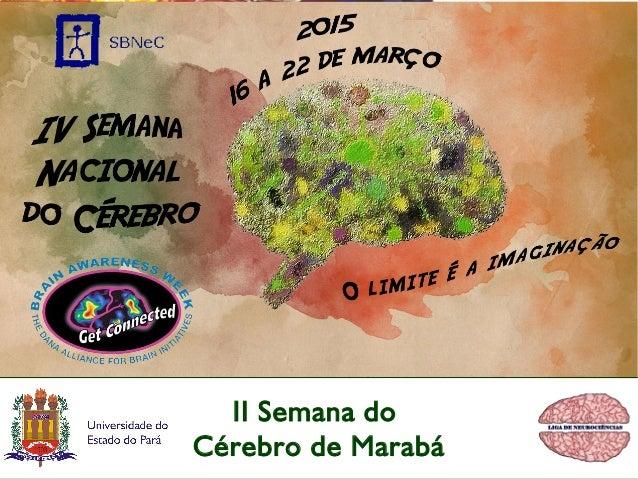 II Semana do Cérebro de Marabá