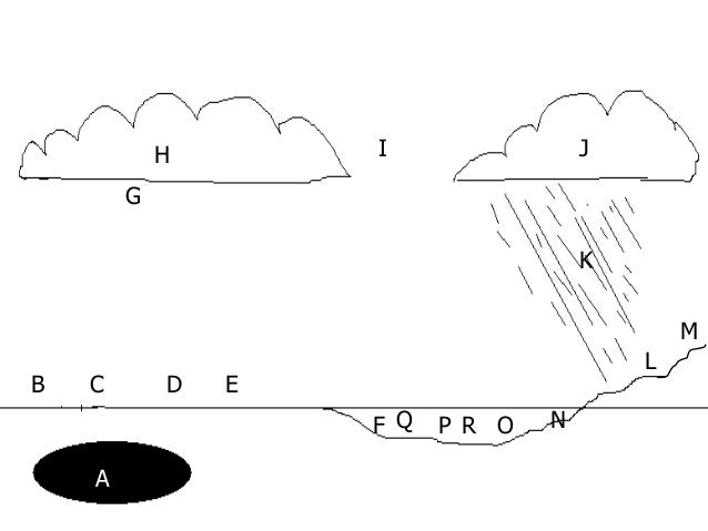 pH Lesson PowerPoint, Acid, Base, Acid Rain