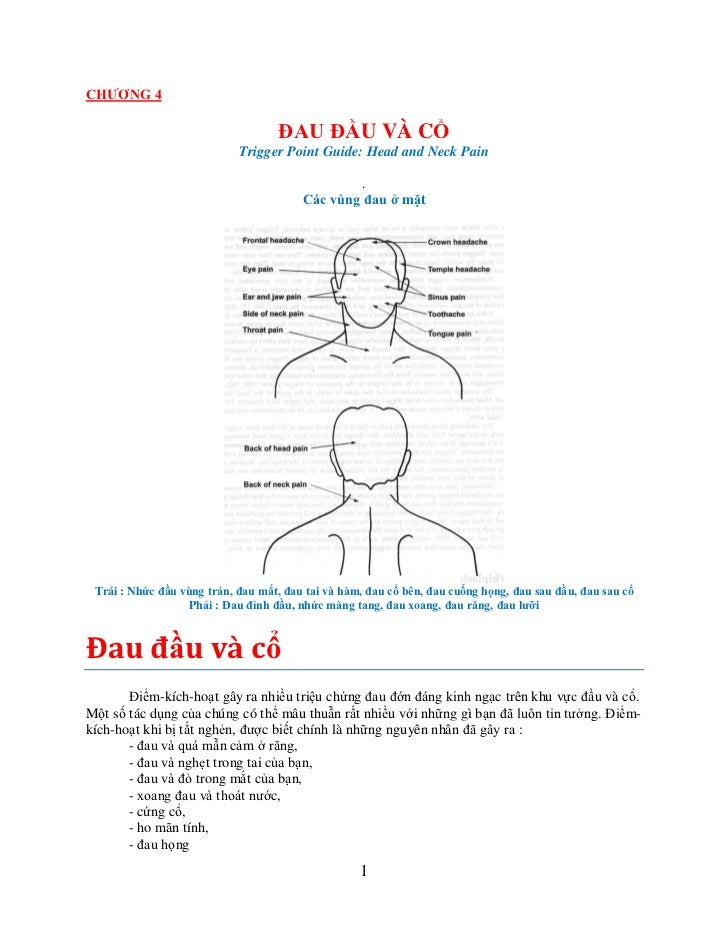 CHƢƠNG 4                                    ĐAU ĐẦU VÀ CỔ                            Trigger Point Guide: Head and Neck Pa...