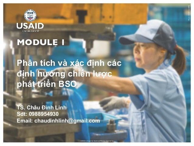 USAID Linkages for Small and Medium Enterprises MODULE 1 Phân tích và xác định các định hướng chiến lược phát triển BSO Ph...