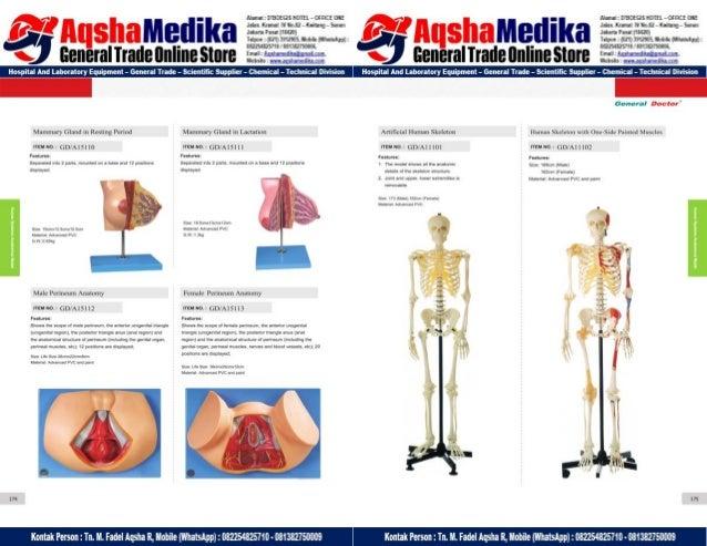Phantom Alat Peraga Kesehatan General Doctor Product Catalog 2017-2018 – Hal.101