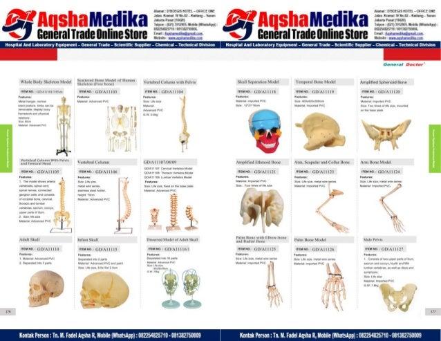 Phantom Alat Peraga Kesehatan General Doctor Product Catalog 2017-2018 – Hal.102