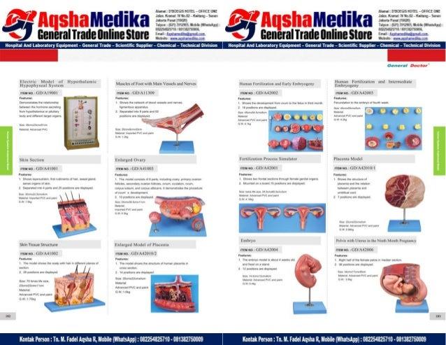 Phantom Alat Peraga Kesehatan General Doctor Product Catalog 2017-2018 – Hal.105