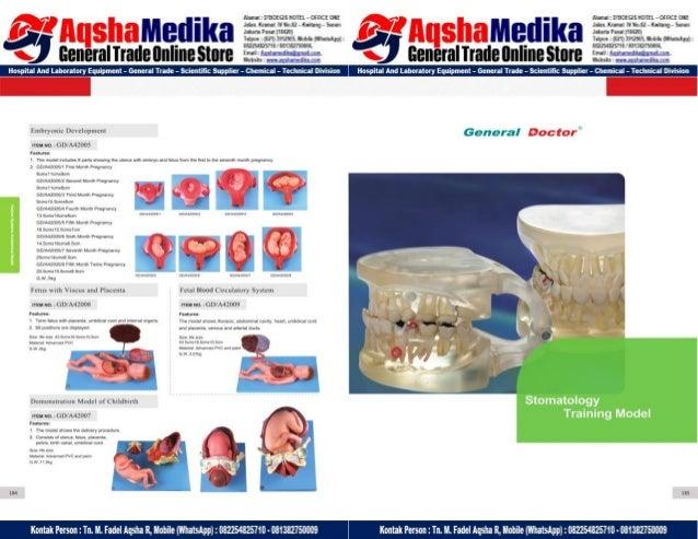 Phantom Alat Peraga Kesehatan General Doctor Product Catalog 2017-2018 – Hal.106