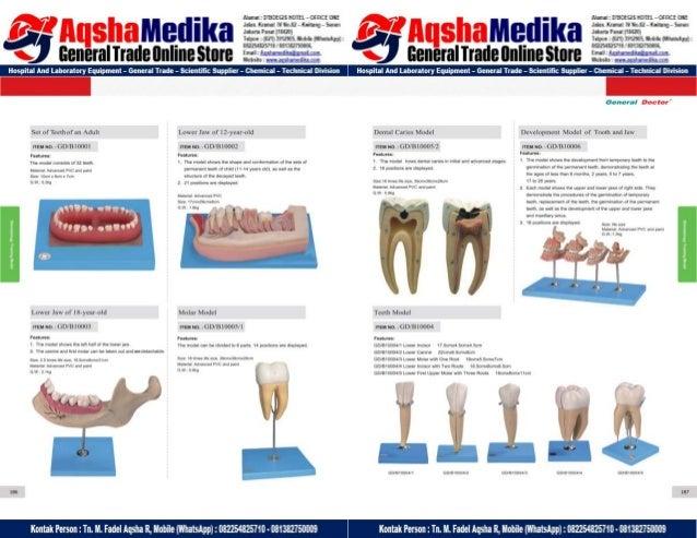 Phantom Alat Peraga Kesehatan General Doctor Product Catalog 2017-2018 – Hal.107