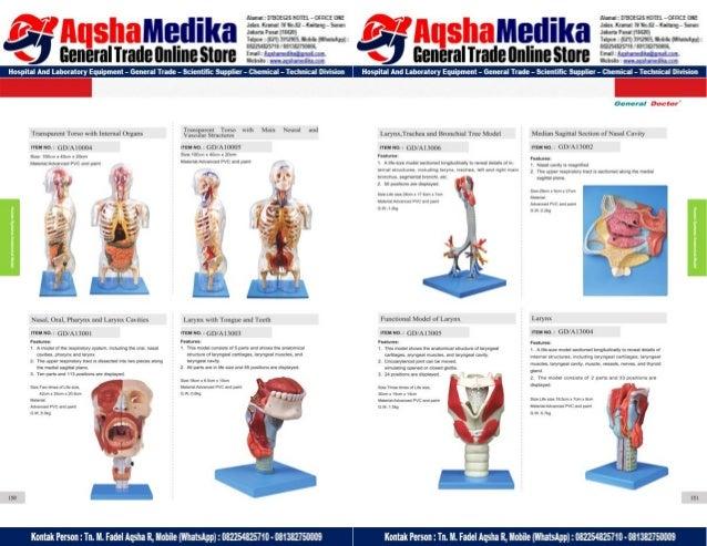 Phantom Alat Peraga Kesehatan General Doctor Product Catalog 2017-2018 – Hal.89