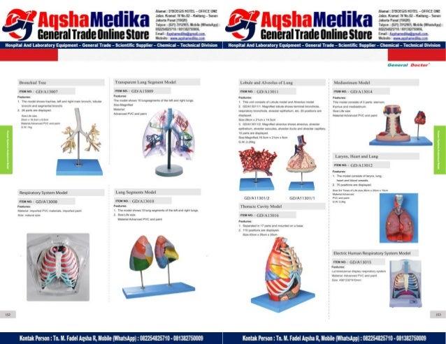 Phantom Alat Peraga Kesehatan General Doctor Product Catalog 2017-2018 – Hal.90