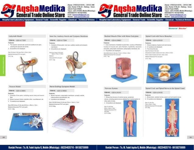 Phantom Alat Peraga Kesehatan General Doctor Product Catalog 2017-2018 – Hal.94