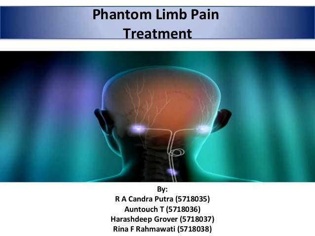 Phantom Limb Pain Treatment By: R A Candra Putra (5718035) Auntouch T (5718036) Harashdeep Grover (5718037) Rina F Rahmawa...
