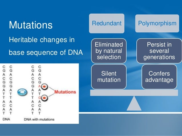 Polymorphisms  Different alternative sequences at a locus within  DNA strand(alleles) that persist in a population throug...