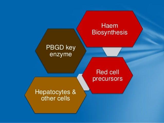 ALA synthase in liver  Induced by drugs like Barbiturates  ALA(delta amino laevulanic acid)  Porphyrins  Increased ALA pro...