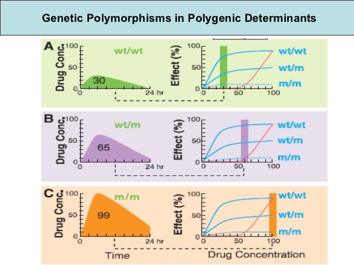 Genetic Polymorphisms in Polygenic Determinants